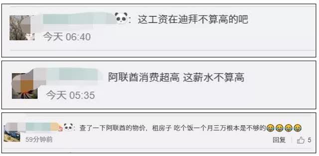 36万年薪!往返机票全免!阿联酋重金招中文老师,网友评论亮了2