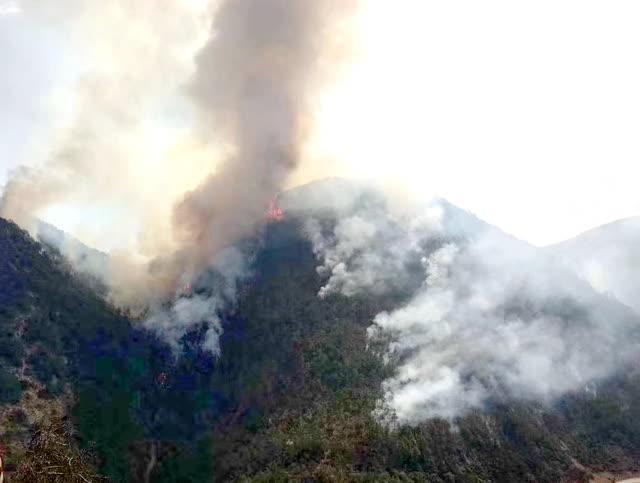 玉龙奉科山火基本控制 距丽江城区约200公里未对当地旅游影响 (2)