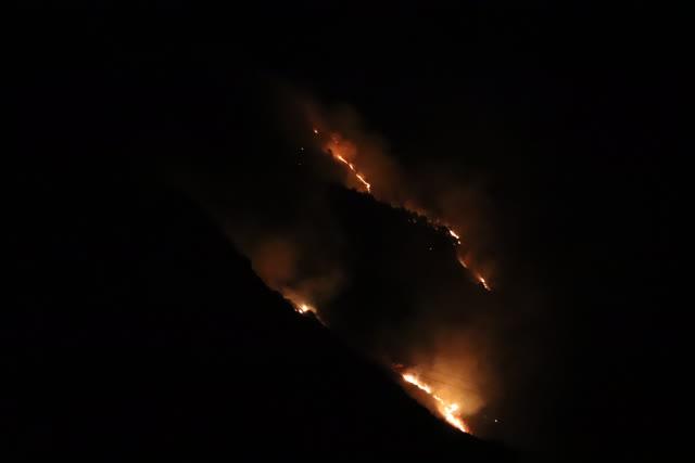 大理州森林消防支队100名指战员抵达 (1)